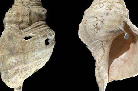 Briri më i vjetër në botë: Dëgjoni tingullin e këtij instrumenti 18,000-vjeçar (VIDEO)