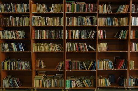 """Biblioteka """"Ibrahim Rugova"""". Cilët shkrimtarë lexohen më shumë?"""