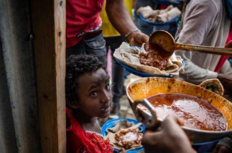 OKB: 33 mijë fëmijë të rajonit Tigray rrezikojnë të vdesin nga uria