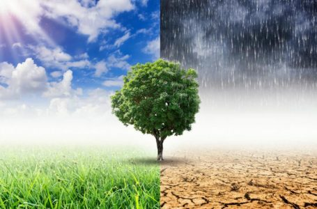 Ndikimi i ndryshimeve të shpeshta klimatike në shëndetin e njeriut