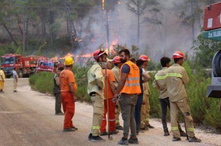 Shkon në pesë numri i të vdekurve shkaku i zjarreve në Turqi
