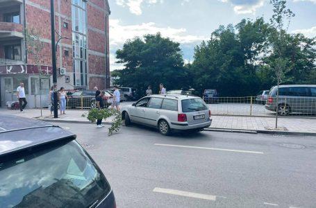 Një person duke dalë nga parkingu, godet pemën