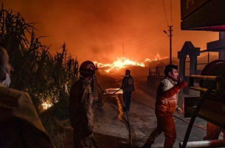 180 të lënduar nga zjarret në Turqi, vdes i riu që ndihmoi zjarrfikësit me ujë të pijshëm