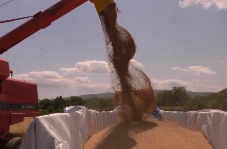 Fushata e korrje-shirjeve në Gjakovë po realizohet sipas planifikimit