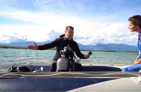 """""""Miq në pasdite""""- zhytje, eksperiencë ndryshe! (VIDEO)"""