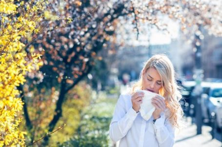 Si të lehtësoni alergjinë nga poleni
