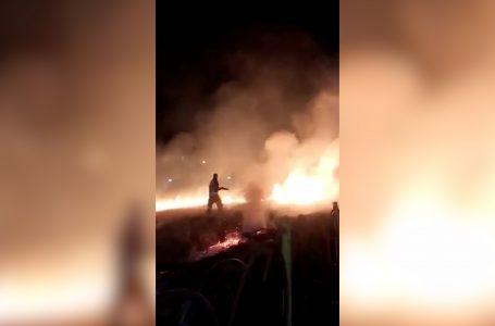 Parku i Lirisë u përfshi nga zjarri