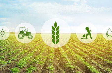 Nga e mërkura hapet afati për aplikim të bujqve për subvencione