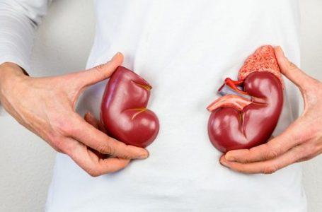 Ushqimet që mund t'i dëmtojnë veshkat