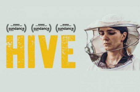 """Kosova propozon filmin """"Zgjoi"""" për Oscars 2022"""