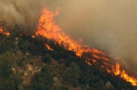 Bjeshkët e fshatit Topillë përfshihen nga zjarri