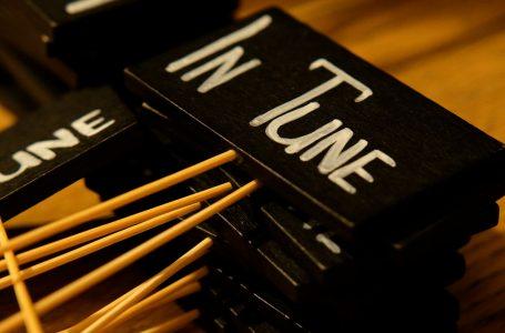 """""""In Tune"""" hap dyert për të gjithë artdashësit"""