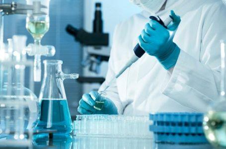 OBSH krijon grupin e ri të ekspertëve për të zbuluar origjinën e Covid-19